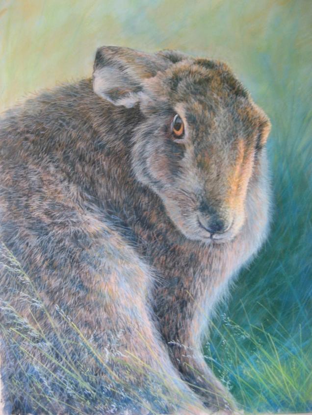 wildlife dennis oakes