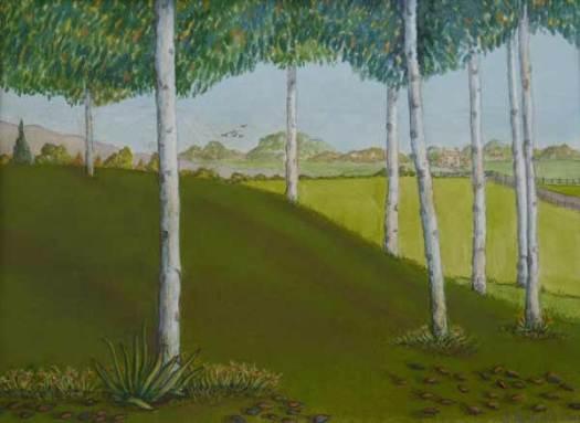 8 silver birch