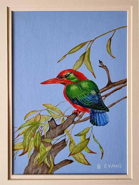 Extinct Guam Kingfisher